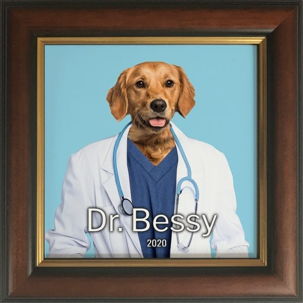 Imaging your pet as a doctor. Get this custom made personalised ceramic artwork of your pet simply by visiting our website and follow the instructions. This is a pet painting on ceramic, framed in a real wood frame. This is all handmade in Ireland and delivers anywhere around the world. This pet portrait painting is of a dog in a Brown and Gold frame.