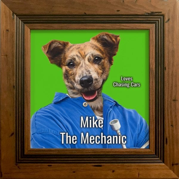Imagine your pet as a mechanic. This is a custom artwork painting on ceramic of a pet. It comes already framed - in this instance this pet artwork is in a rustic pine frame.