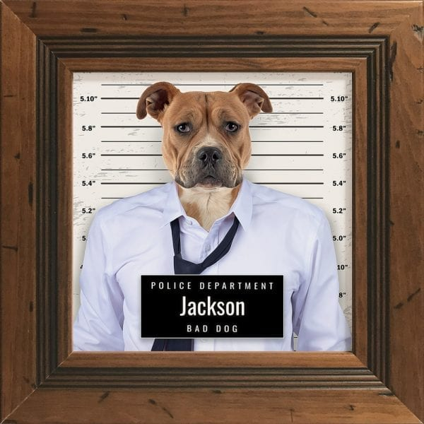Picture Parcel crook pet porrait - police line up. Great and fun pet portrait gift. This is pet portrait in a rustic pine frame.