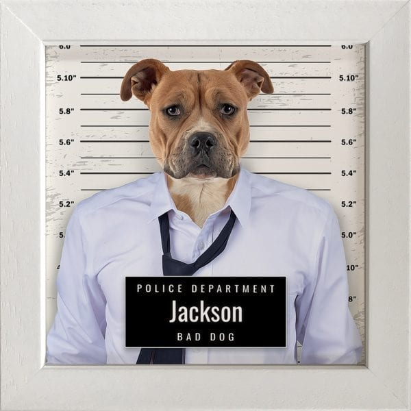 Picture Parcel crook pet porrait - police line up. Great and fun pet portrait gift. This is pet portrait in a white frame.