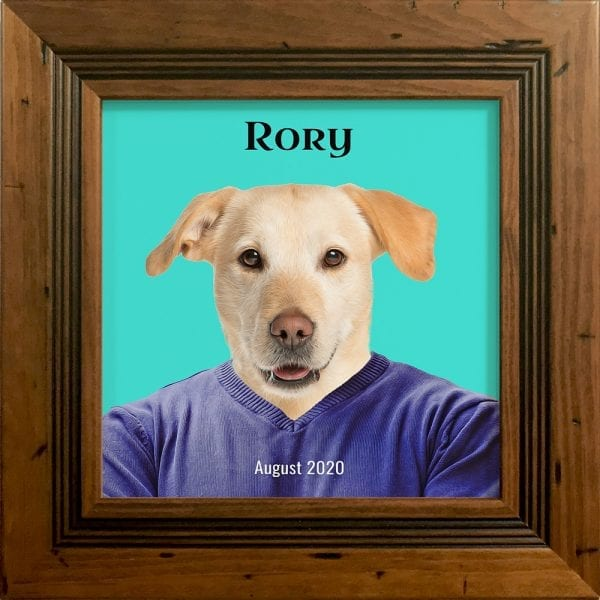 Imagine your pet in everyday clothing. This is a custom artwork painting on ceramic of a pet. It comes already framed - in this instance this pet artwork is in a rustic pine frame.
