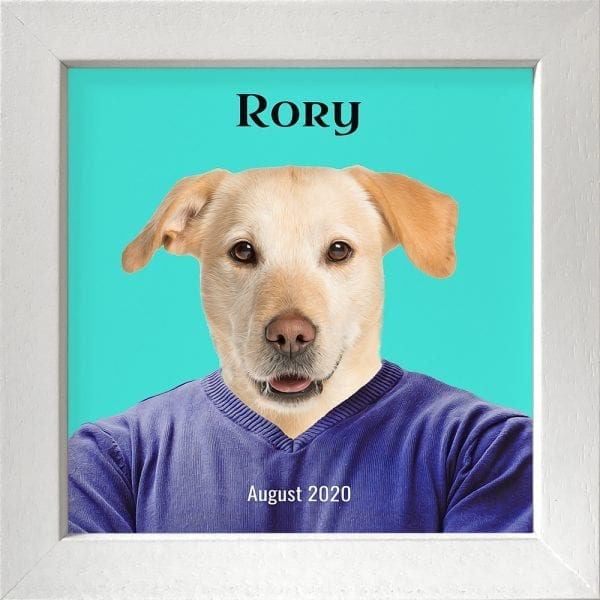 Imagine your pet in everyday clothing. This is a custom artwork painting on ceramic of a pet. It comes already framed - in this instance this pet artwork is in a white frame.