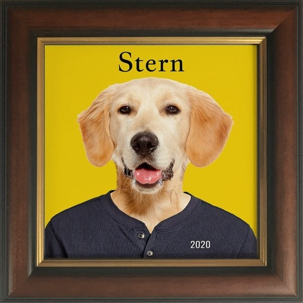 Imagine your pet in everyday clothing. This is a custom artwork painting on ceramic of a pet. It comes already framed - in this instance this pet artwork is in a white frame. You can personalise with your own text. This can all be designed online and we make them in Ireland, and ship worldwide. This pet portrait is in a Brown and Gold frame.