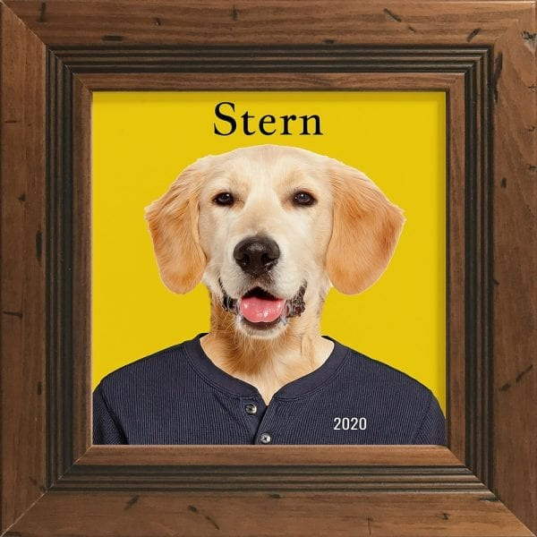 Imagine your pet in everyday clothing. This is a custom artwork painting on ceramic of a pet. It comes already framed - in this instance this pet artwork is in a white frame. You can personalise with your own text. This can all be designed online and we make them in Ireland, and ship worldwide. This pet portrait is in a Old pine style frame.
