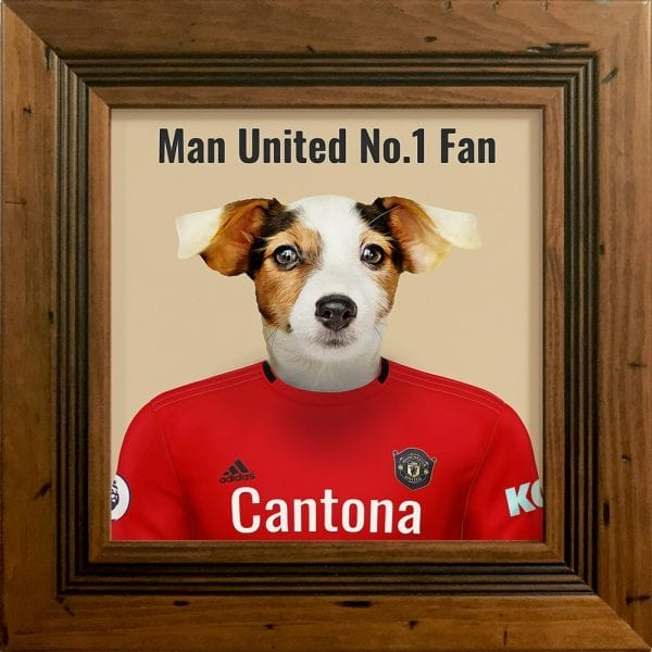 Picture Parcel Pet Portraits - Your pet in their sports team colours. This is Man United pet portrait on ceramic art tile presented in a rustic Pine frame.