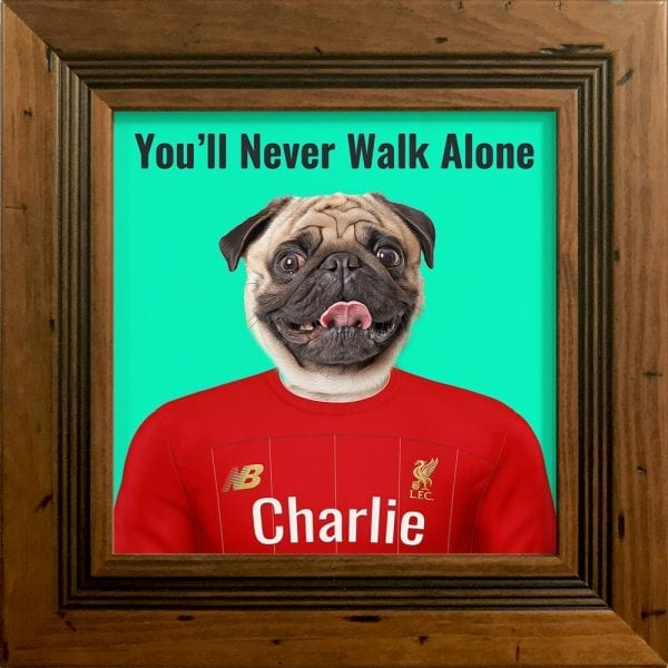 You'll never walk alone - pet portrait. Your pet painted into Liverpool Soccer club kit. Great gift for all Sport fans. This is a Picture Parcel pet portrait of a dog in a solid wood frame. Handmade in Ireland. This is a rustic pine frame.
