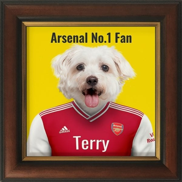 Fantastic gift for an Arsenal fan - their pet in Arsenal's soccer team kit. Look fantastic in any home. This image is an Arsenal fans pet in their team colors. Printed on gloss ceramic and comes framed in areal wood frame. This frame is gold and brown - handmade in Ireland.