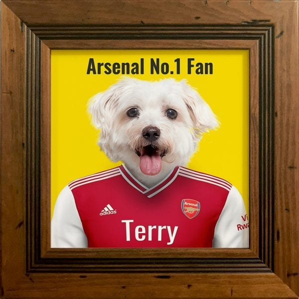 Fantastic gift for an Arsenal fan - their pet in Arsenal's soccer team kit. Look fantastic in any home. This image is an Arsenal fans pet in their team colors. Printed on gloss ceramic and comes framed in areal wood frame. This frame is rustic pine - handmade in Ireland.