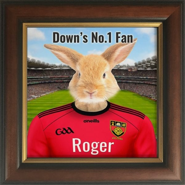 Down GAA fans gift. A personalised pet portrait ceramic GAA gift in a gold and brown frame. Picture Parcel pet portraits are handmade in Ireland and ship worldwide. A great gift for any GAA supporter at home or abroad.