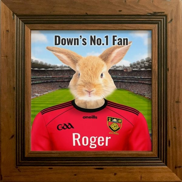 Down GAA fans gift. A personalised pet portrait ceramic GAA gift in a rustic pine frame. Picture Parcel pet portraits are handmade in Ireland and ship worldwide. A great gift for any GAA supporter at home or abroad.
