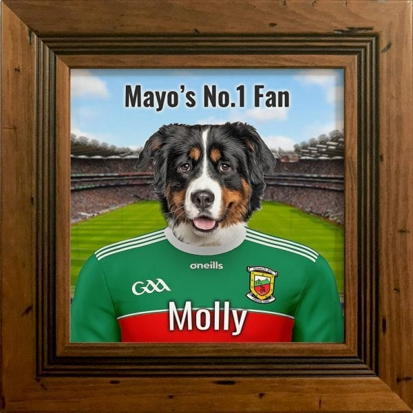 Mayo GAA fans gift. A personalised pet portrait ceramic GAA gift in a rustic pine real wood frame. Picture Parcel pet portraits are handmade in Ireland and ship worldwide. A great gift for any GAA supporter at home or abroad.