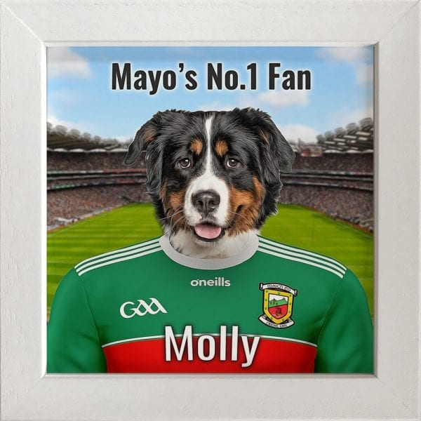 Mayo GAA fans gift. A personalised pet portrait ceramic GAA gift in a white real wood frame. Picture Parcel pet portraits are handmade in Ireland and ship worldwide. A great gift for any GAA supporter at home or abroad.