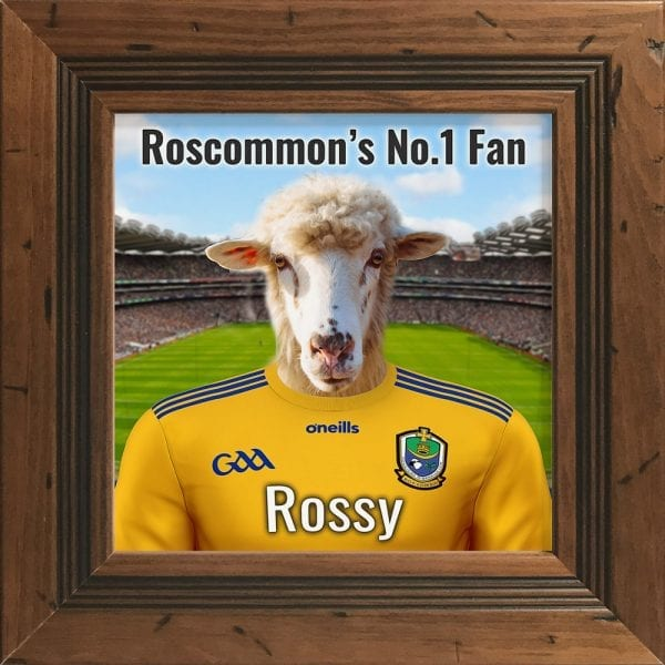 Roscommon GAA fans gift. A personalised pet portrait ceramic GAA gift in a rustic pine real wood frame. Picture Parcel pet portraits are handmade in Ireland and ship worldwide. A great gift for any GAA supporter at home or abroad. Come ready to hang or display on a shelf - therefore no extra framing expense.