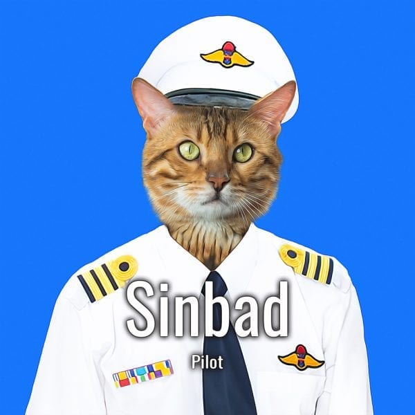 Imagine your pet as a pilot. This is your pet painted in a pilots uniform. Add your own text.