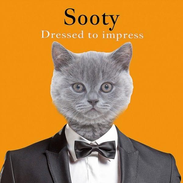 Funny Pet portraits - cat or pet in a James Bond Tuxedo. Framed artwork. Delivered Worldwide.