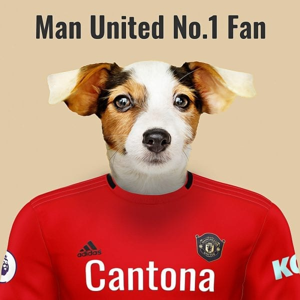 Manchester United Pet Portrait. Great gift for soccer fan. Their pet portrait on A gloss ceramic. Comes all ready framed - so no need of extra expense. Picture Parcel Pet Portraits are handmade personalised gifts that look great in any home. These can be wall hung or table top display.