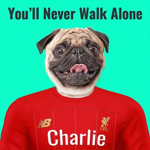 Liverpool Pet Portrait. Great gift for soccer fan. Their pet portrait on A gloss ceramic. Comes all ready framed - so no need of extra expense. Picture Parcel Pet Portraits are handmade personalised gifts that look great in any home. These can be wall hung or table top display.