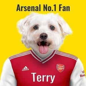 Arsenal Pet Portrait. Great gift for soccer fan. Their pet portrait on A gloss ceramic. Comes all ready framed - so no need of extra expense. Picture Parcel Pet Portraits are handmade personalised gifts that look great in any home. These can be wall hung or table top display.