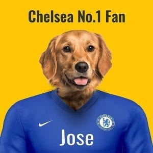 Chelsea Pet Portrait. Great gift for soccer fan. Their pet portrait on A gloss ceramic. Comes all ready framed - so no need of extra expense. Picture Parcel Pet Portraits are handmade personalised gifts that look great in any home. These can be wall hung or table top display.