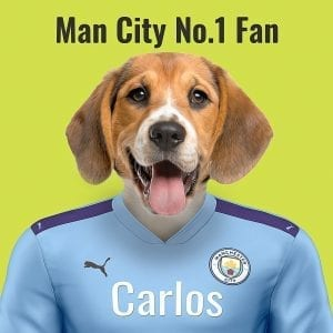 Manchester City Pet Portrait. Great gift for soccer fan. Their pet portrait on A gloss ceramic. Comes all ready framed - so no need of extra expense. Picture Parcel Pet Portraits are handmade personalised gifts that look great in any home. These can be wall hung or table top display.