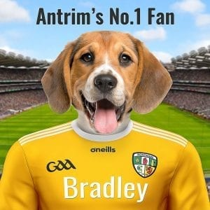 Antrim GAA gift. Antrim personalised GAA Pet Portrait. Ceramic art in a handmade real-wood frame. Picture Parcel GAA Pet Portraits are made in Ireland and ship Worldwide.