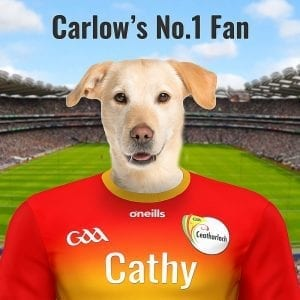 A pet portrait for any Carlow GAA fan. imagine your pet in their county GAA colours at Croke Park - the GAA Headquarters. This Irish made GAA Gift comes with a real-wood frame - that is handmade. You can personalise this GAA item by uploading you pets photo and editing the text. This can be all done online and we deliver worldwide. A fantastic gift for any Carlow GAA fan at home or abroad.