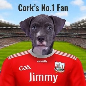 Cork GAA fans are going crazy for this Cork GAA gift. A family pet - pet portrait in the Cork GAA colours at Croke Park. This quality GAA gift is handmade in Ireland and can be delivered worldwide. You can design this personalised GAA gift online - add your pets photo and edit the text - we''' look after the rest. A real WOW item when displayed in your home.