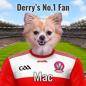 Derry GAA fans GAA gift! A high gloss ceramic with your pet portrait on it. They are dressed in Derrys GAA county colours in from of Croke Park. This GAA gift comes already framed - ready to display in any Derry GAA fans home or business. Its the perfect gift for any Derry GAA fan that also is a pet owner. Its unique and very personal - you can add your own text to this GAA item.