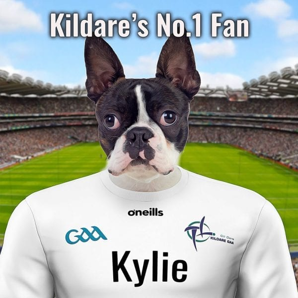 A unique gift for a KIldare GAA fan! This pet portrait is of your pet dressed in Kildare's GAA count colours in Croke Park. Handmade in Ireland this ceramic art comes framed in a real-wood frame, ready for display. Looks fantastic in a Kildare GAA fans home, in Ireland or abroad.