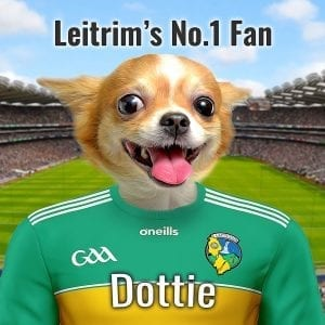 A wonderful GAA gift for Leitrim GAA fans. Your GAA pet portrait on ceramic. Comes already framed in a real-wood frame. Great unique and personalised GAA gift for any Leitrim GAA fan. Your pet in Leitrims county GAA colors in front of Croke Park. We ship worldwide - so fantastic for the GAA fan living abroad.