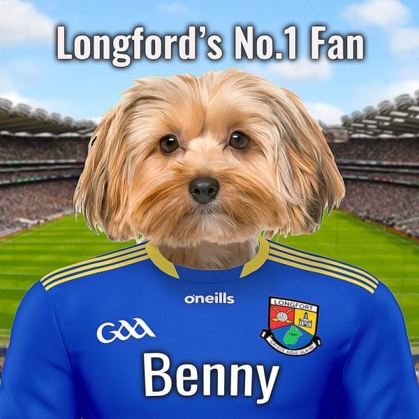 Longford GAA fans Pet Portrait in oil paint style on ceramic. Croke Park (GAA Headquarters) is pictured behind your pet in GAA county colours. This personalised GAA gift comes already framed in areal-wood frame. It is all made at home here in Ireland and we can ship anywhere in the world. This looks fantastic in any Longford GAA fans home.