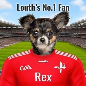 A pet portrait for GAA fans. This one is especially for Louth GAA fans! You Picture Parcel Pet Portrait comes in your GAA county colours. This is in an oil paint style on ceramic. It comes already framed ready to display. It takes only a few days to produce and you can add your own text. Design it online - your GAA gift can be shipped worldwide - so fantastic for the GAA fan living abroad.