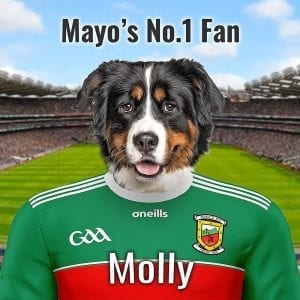 Mayo GGAA fans will love this personalised, unique GAA gift. You can have your pet dressed in the MAYOs county GAA colours in front of Croke Park. This is made here in Ireland and we can deliver around the world. Great gift for a loved one abroad. Every GAA fan would love this unique gift. It comes in a handmade frame with hanging and picture stand attachments.