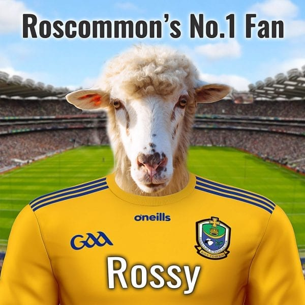 All The Rossies GAA fans will really appreciate this unique and fun GAA gift. Their pet in oil paint style on a gloss ceramic art tile. This Roscommon F=GAA gift comes in areal-wood handmade frame ready for display. The item can be personalised with additional text. What a beautiful gift for any Roscommon GAA fan! Item is made at home in Ireland and can be shipped worldwide to any Rossie.