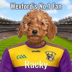 Pet portrait - Wexford GAA pet portrait. Perfect gift for your county Wexford GAA fanatic. Looks fantastic in any GAA fans home. A ceramic art with a pet dressed in countys GAA team colours. This one is for county Wexford. Hurling has been played in Wexford from medieval times. Evidence of this can be found in the hurling ballads of the 15th and 16th centuries