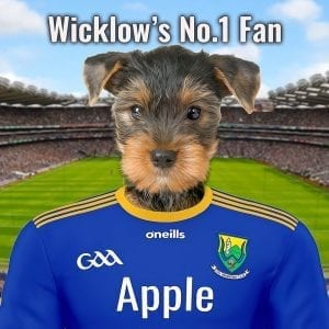 Pet portrait - Wicklow GAA pet portrait. Perfect gift for your county Wicklow GAA fanatic. Looks fantastic in any GAA fans home. A ceramic art with a pet dressed in countys GAA team colours. This one is for county wicklow.