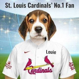"St. Louis Cardinals St. Louis Cardinals baseball team officially changed its nickname in 1900 when a columnist for the St. Louis Republic newspaper reportedly heard a woman refer to the team's red stockings as a ""lovely shade of Cardinal"". The fans loved the name so it stuck. Looking for a fantastic, unique and personalised gift for all St. Louis Cardinals fans and pet owners? You can design your pet portrait online and we look after the rest. This is a custom made baseball St. Louis Cardinals fan gift suitable for any occasion. Handmade in Ireland - our personalised pet portraits are delivered worldwide. St. Louis Cardinals fans that are also pet owners will love this personalised, fun and thoughtful gift. Suitable for any occasion, birthday, Christmas, new home etc..."