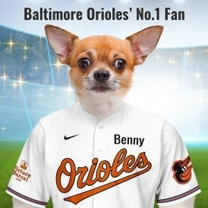 Baltimore Orioles Picture Parcel Pet Portraits make great gifts for Baltimore Orioles fans that are also pet owners. The Baltimore Orioles baseball team take there nickname from the state bird of Maryland. The orange and black colors of the male Oriole bird resembled the colors on the coat of arms of Lord Baltimore. Picture Parcel Pet portraits digitally paint your pet in the Baltimore Orioles team colours. Oil painting style on a piece of ceramic art. Framed in a real-wood frame. Fantastic gift for all Baltimore Orioles fans and pet owners.