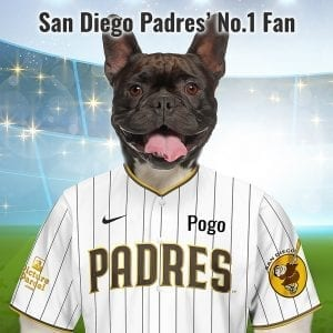 San Diego Padres The Padres nickname, which is Spanish for father or priest, is a reference to San Diego's status as the first Spanish Mission in California. Looking for a fantastic, unique and personalised gift for all San Diego Padres fans and pet owners? You can design your pet portrait online and we look after the rest. This is a custom made baseball San Diego Padres fan gift suitable for any occasion. Handmade in Ireland - our personalised pet portraits are delivered worldwide. San Diego Padres fans that are also pet owners will love this personalised, fun and thoughtful gift. Suitable for any occasion, birthday, Christmas, new home etc...