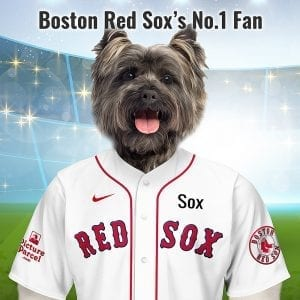 Boston Red Sox Picture Parcel Pet portraits digitally paint your pet in the Boston Red Sox team colours. Oil painting style on a piece of ceramic art. Framed in a real-wood frame. Fantastic gift for all Boston Red Sox fans and pet owners. In 1907 Red Sox, was the name name popularized by the Cincinnati Red Stockings from 1867-1870 and used by Boston's National League franchise from 1871-1876. Looking for an unusual gift for a Boston Red-Sox fan - we have it. Pet portraits are a great way to celebrate your team and your pet.