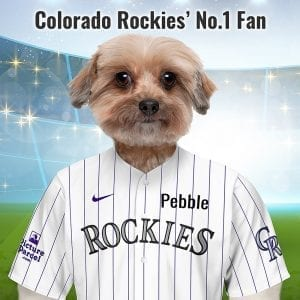 Colorado Rockies Taking the name in 1993 - the Colorado Rockies are a great American baseball team playing in the MLB. Picture Parcel Pet portraits digitally paint your pet in the Colorado Rockies team colours. Oil painting style on a piece of ceramic art. Framed in a real-wood frame. Fantastic gift for all Colorado Rockies fans and pet owners. You can design your pet portrait online and we look after the rest.