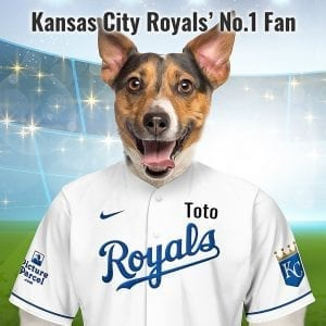 """Kansas City Royals In 1969, Kansa City Baseball club officials chose Royals as the new name from more than 17,000 entries in a name-the-team contest. """"Royalty stands for the best"""". Looking for an personalised gift for a Kansas City Royals fan? Picture Parcel Pet portraits digitally paint your pet in the Kansas City Royals team colours. Oil painting style on a piece of ceramic art. Framed in a real-wood frame. Fantastic gift for all Kansas City Royals fans and pet owners. You can design your pet portrait online and we look after the rest. This is a custom made baseball fan gift suitable for any occasion, birthday, Christmas, new home etc..."""