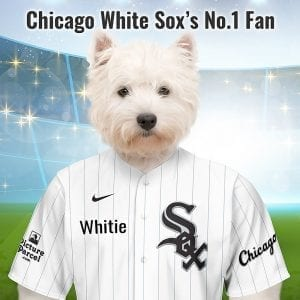 Chicago White Sox The Chicago White Sox baseball team were previously known as the White Stockings, this was shortened to White Sox a few years after the club joined the American League in 1901. Picture Parcel Pet portraits digitally paint your pet in the Chicago White Sox team colours. Oil painting style on a piece of ceramic art. Framed in a real-wood frame. Fantastic gift for all Chicago White Sox fans and pet owners. You can design your pet portrait online and we look after the rest. This is a custom made baseball fan gift suitable for any occasion.