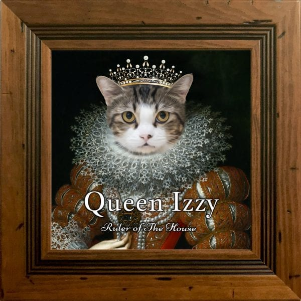Cat Portrait Ireland- Personalised