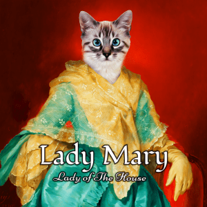 214 – Lady Mary Framed Ceramic  Portrait