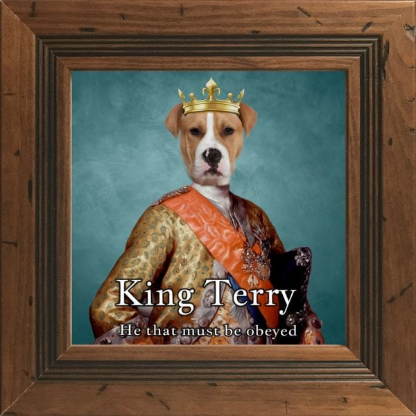 118- Dog King Portrait Ireland in a Rustic Frame