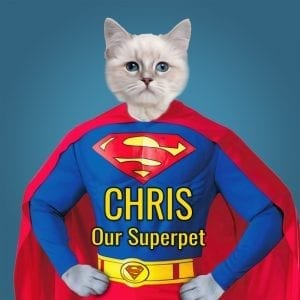 Superman Pet Portrait