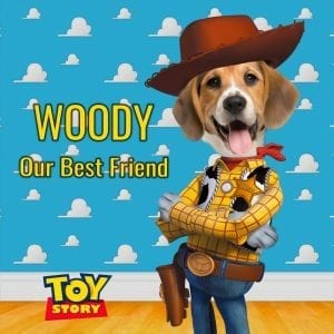 805 - Woody Pet portrait - inspired by Toy Story.