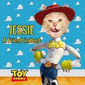806 - Jessie from Toy Story Pet Portrait