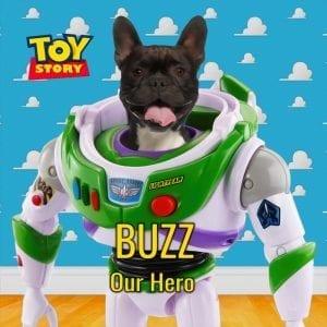 807- Buzz Lightyear inspired Pet Portrait.